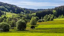 Beautiful View Near Innernzell-Bavaria-Germany