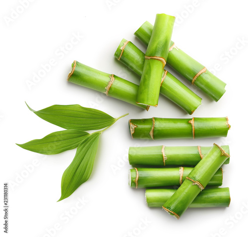 Branches of bamboo isolated on white background Canvas Print