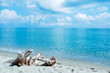 Riva Bella beach in Corsica, France