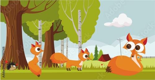 Valokuva  fox