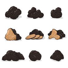 Black Truffle Mushroom Vector Cartoon Set Isolated On White Background.