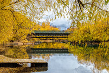 Bridge Over River In Fall Colors, Riverside Park, Whitefish, Montana