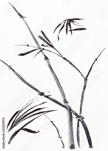 fototapeta na lodówkę bamboo plant drawn by black watercolors