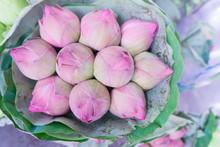 Pink Lotus Bud Bundle Bouquet ...