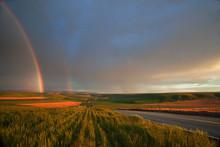 Rainbow And Highway
