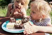 Siblings Choosing Pieces Of Cake On Plate Outdoors