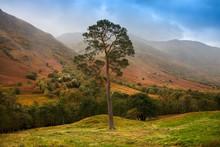 Glen Nevis, Lochaber, Scotland...