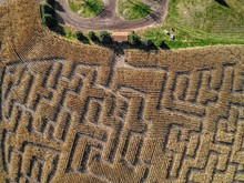 Aerial View Of A Corn Maze In Eastern South Dakota During October