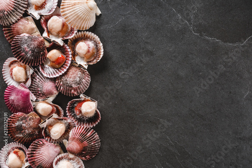 Foto op Aluminium Schaaldieren Raw scallops on slate stone background. Seafood, Shellfish, top view, flat lay, copy space