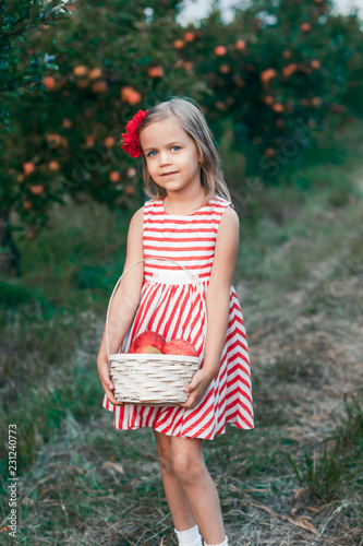 8ef4e90f466 A girl in a red dress and with red flower in her hair in the apple tree  garden picking apples. having fun outside