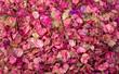 Leinwanddruck Bild - Flores secas de bougainville