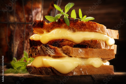 Fototapeta Whole grain bread sandwich with cheese and hrbs on wooden background and empty space for text obraz