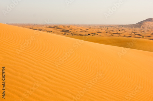 Staande foto Droogte Sand yellow wave in the desert and dunes on a clear day