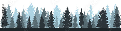 Foto op Canvas Bos Winter forest (fir trees, spruce) silhouette on white background. Vector illustration.