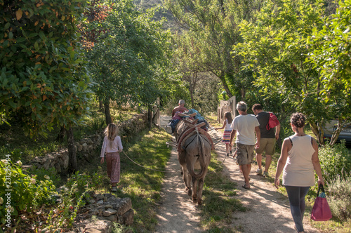 Poster Equitation trekking with mule
