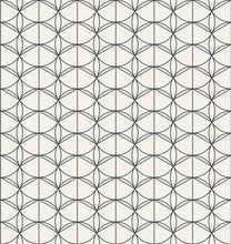 Geometric Seamless Classic Pat...
