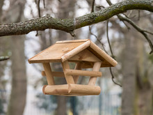 Feed For Bird In Park. Wooden ...