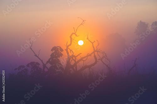 Fenland dawn, 1st September 2017 Fototapet