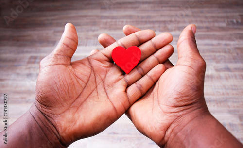 Red Heart in loving and Caring Human Palms Wallpaper Mural