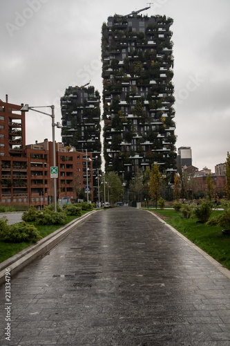 Photo bosco verticale