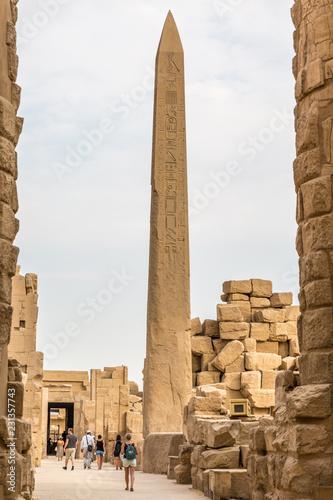 Foto op Plexiglas Bedehuis The temple in Karnak