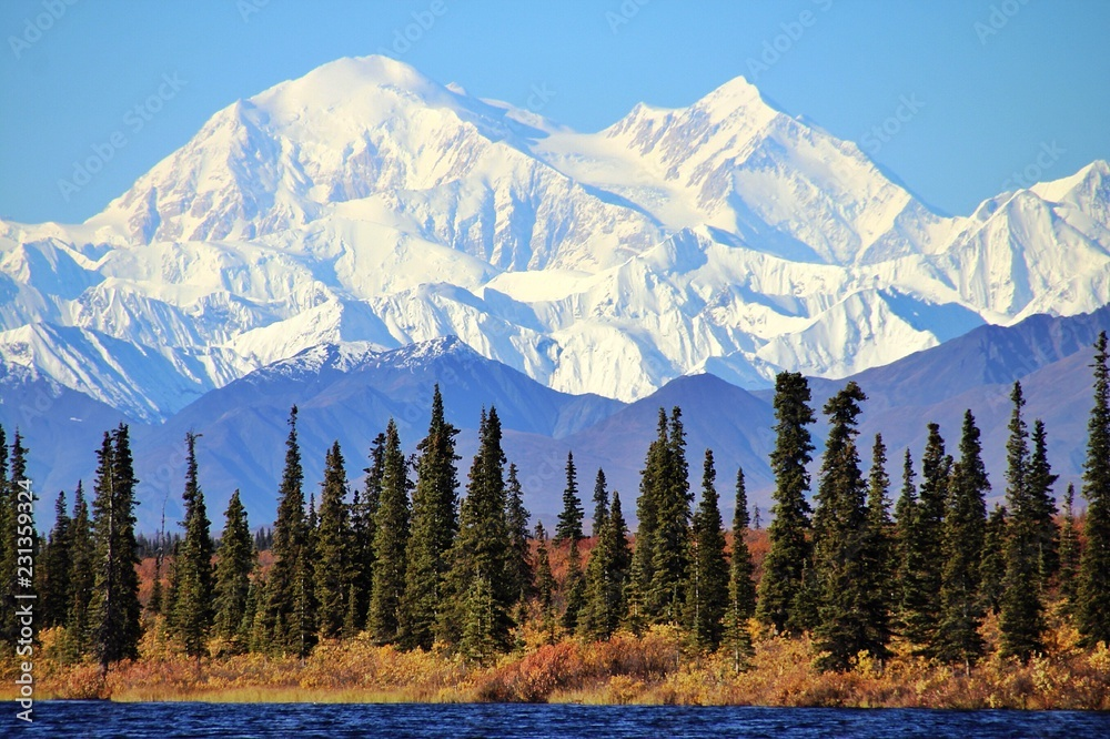 Fototapety, obrazy: Denali in Alaska, is the highest mountain peak in North America.