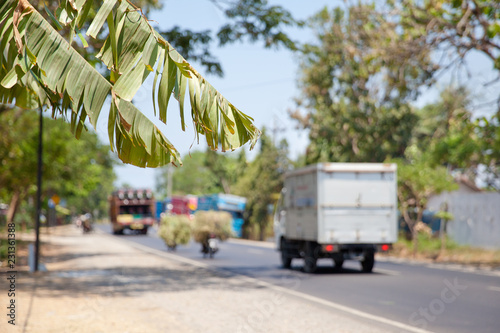 Poster Palmier road and transport in Indonesia