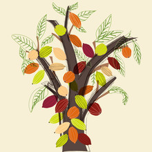 Colorful Cacao Tree Illustration In A Stylized Modern Style.