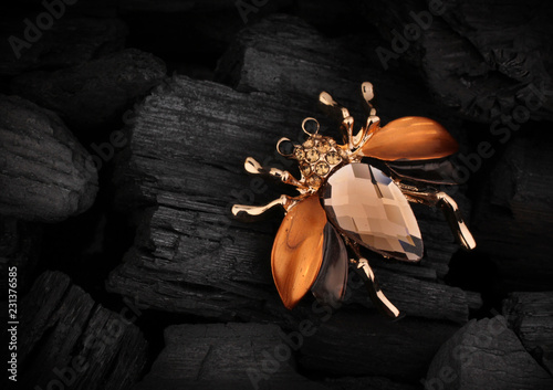 Foto Jewelery bug brooch with gemstone on black coal background, copy space