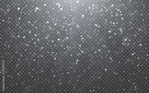 Fotografia Christmas snow
