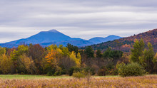 View Of Camels Hump Mountain I...
