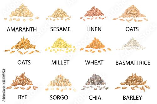 Carta da parati Set of hand drawn colored piles of cereal grains