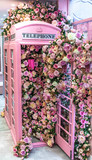 Fototapeta Londyn - pink phone booth  and colourful flowers  in London