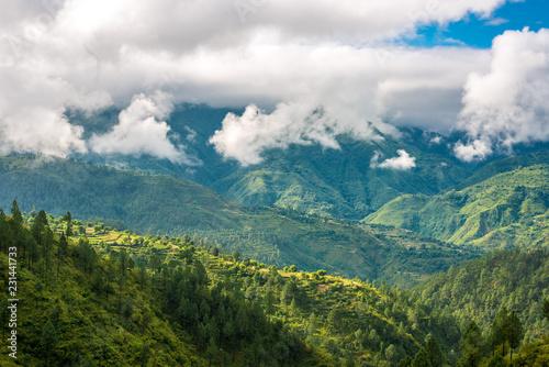 Fog in Himalayas - - Lohaghat, Uttarakhand, India