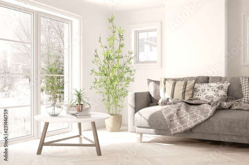Valokuva  White room with sofa and winter landscape in window