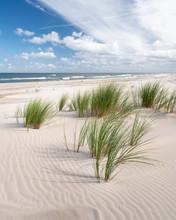 Endless Empty Sandy Beach On Baltic Sea Near Leba Sand Dunes In Poland