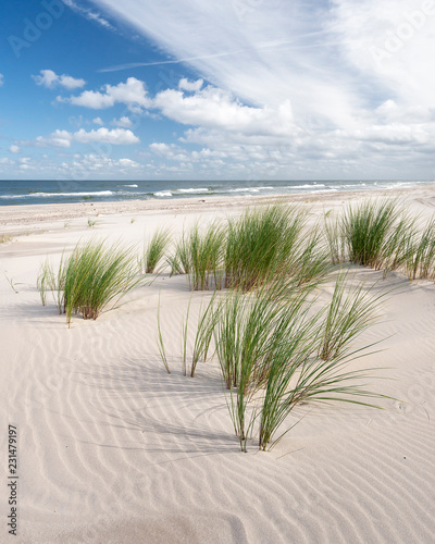 Endless Empty Sandy Beach on Baltic Sea near Leba Sand Dunes in Poland Wall mural