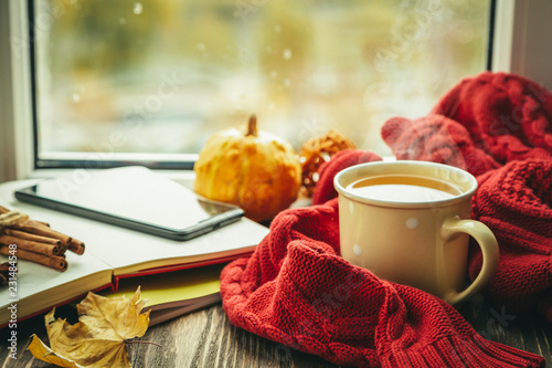 In de dag Thee Autumn tea with scarf and leaves in front of window, copy space