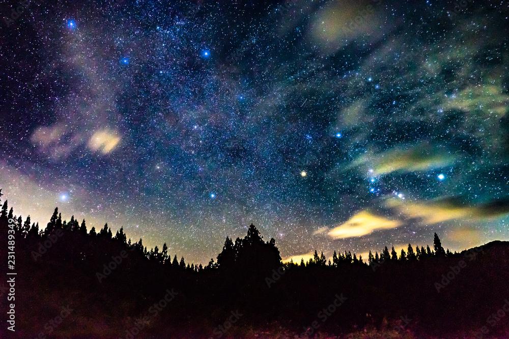 Fototapety, obrazy: 冬の星空