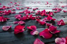 Red Rose Petals On Dark Wooden Textured Floor