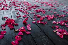 Rose Petals On Dark Wooden Floor