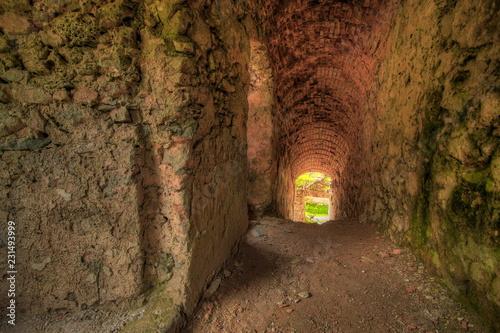 Fotomural  Castle Kamen in Slovenia