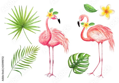 set of watercolor drawings of pink flamingos and palm leaves on a white backgrou Wallpaper Mural