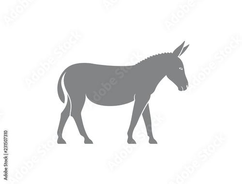 Fotografia Donkey logo. Isolated donkey on white background