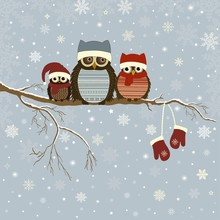 Christmas Card With A Branch With Family Of Owls In Winter