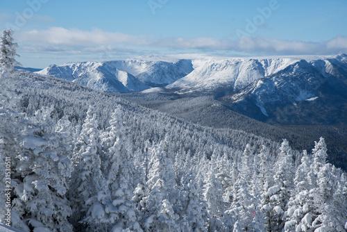 Fotografie, Obraz  Parc national de la Gaspésie sous un couvert de neige frais (Mont Albert)