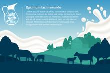 Vector Milk Illustration With Cows, Calves, Farm And Milk Splash