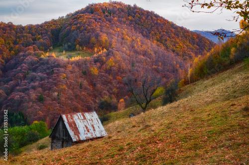 Fotobehang Landschap an old hut in autumn mountain landscape