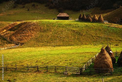 Fotobehang Honing Rural landscape in the Romanian Carpathians, Europe