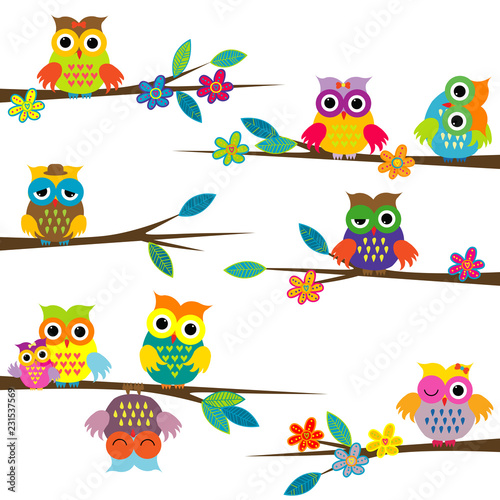 Photo Stands Owls cartoon Cute cartoon owls on tree branch